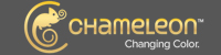 Chameleon Art Products